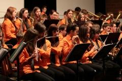 Dech. orchestr - 2012/2013